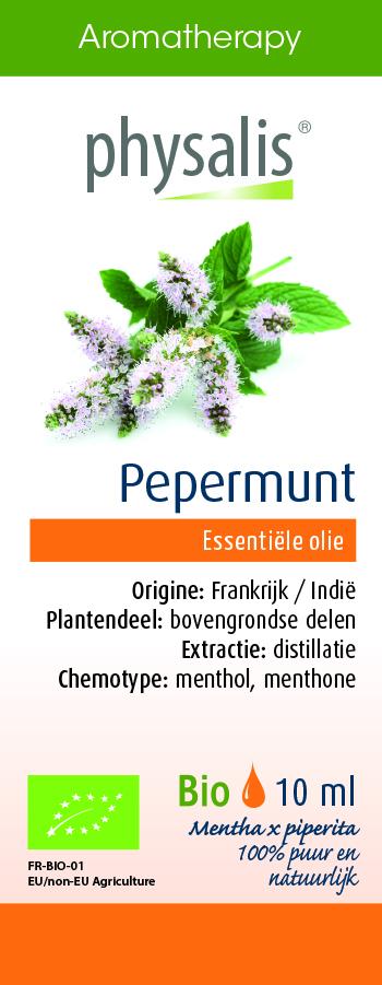 Physalis Pepermunt
