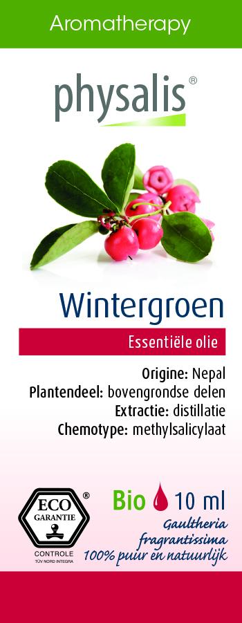Physalis Wintergroen