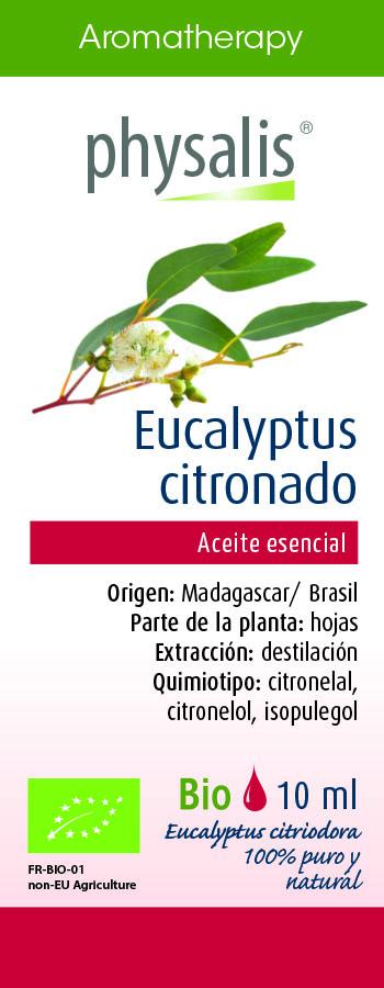 Physalis Eucalyptus citronado