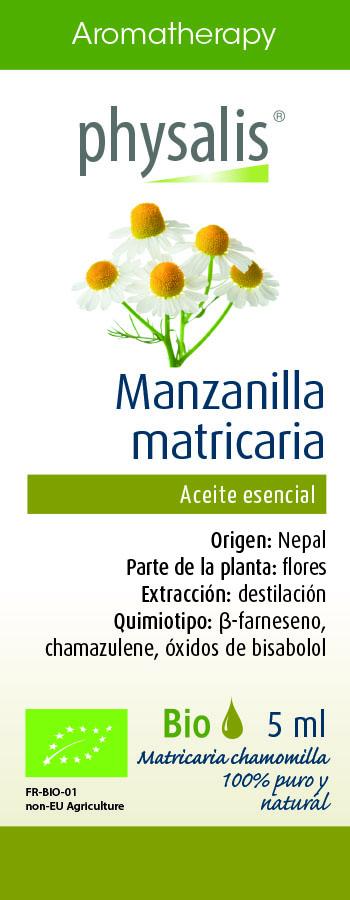 Physalis Manzanilla matricaria