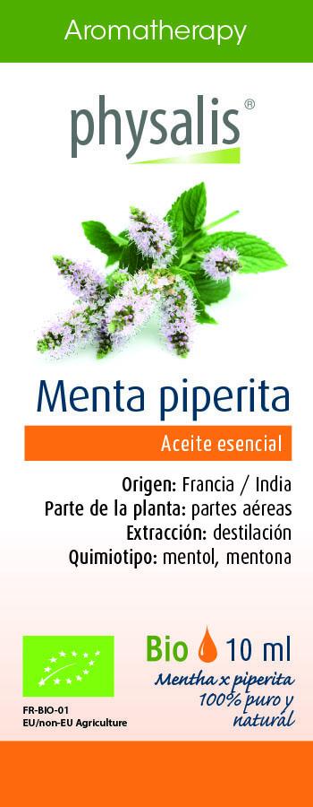 Physalis Menta piperita