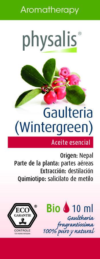 Physalis Gaulteria